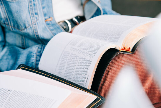 Young Woman Reading the Bible