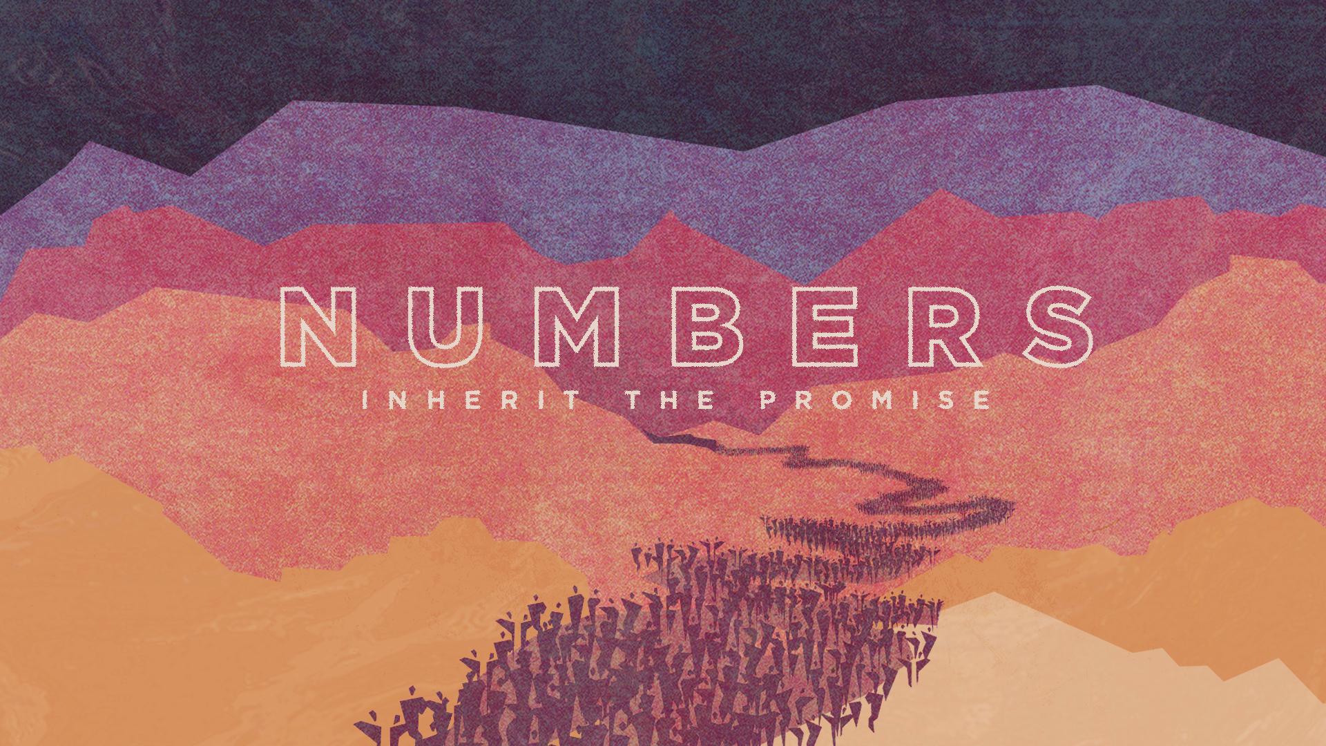Numbers 20: On Display