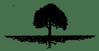 Treeroot2