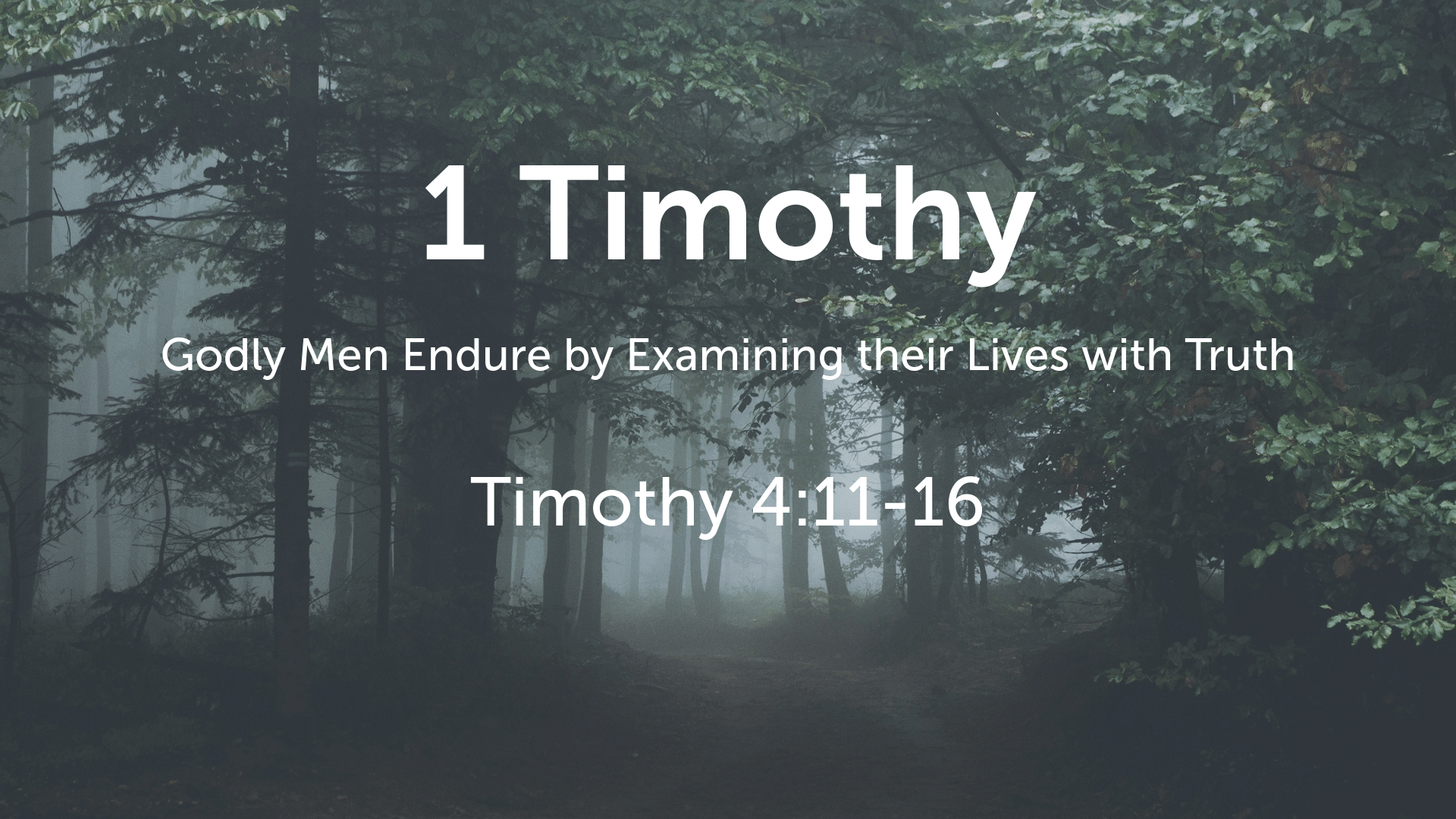 1 Timothy 4:11-16 Questions