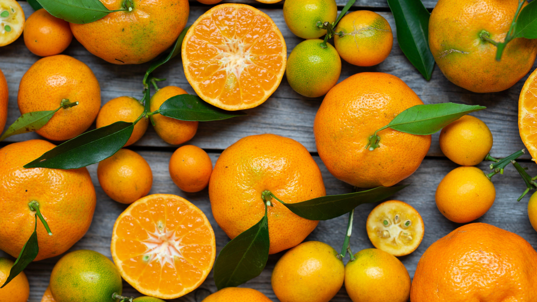 Bear Fruit (John 15:1-11)