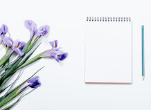 Purple flowers, notebook, pencil and watercolor palette of color