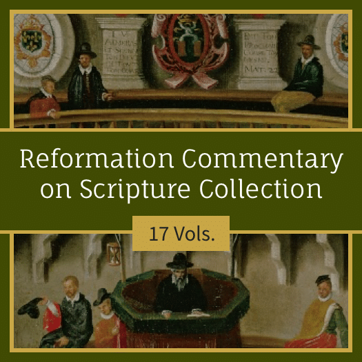 Reformation Commentary on Scripture Collection | RCS (17 vols)