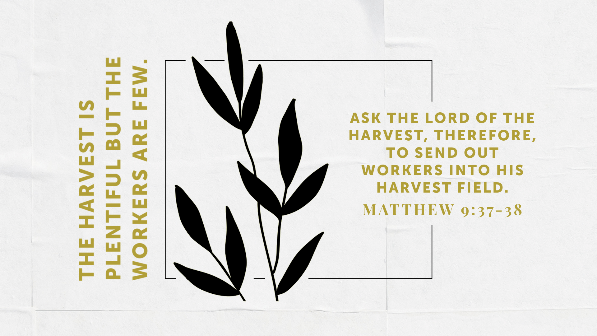 Preparing for Worship - October 4, 2020