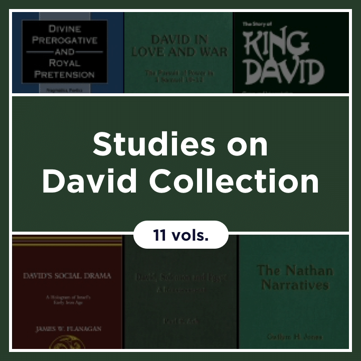 Studies on David Collection (11 vols.)