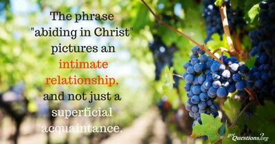 Abiding In Christ 3