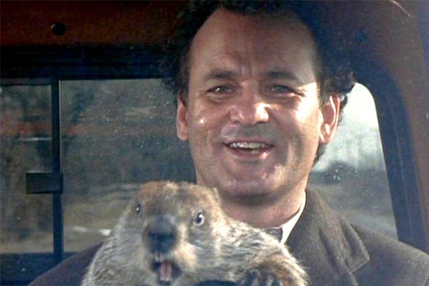 No!  Not Groundhog Day!