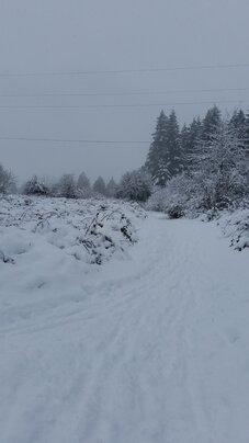 Snow Scene At FT St