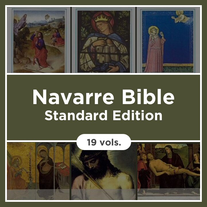 Navarre Bible, Standard Edition (19 vols.)