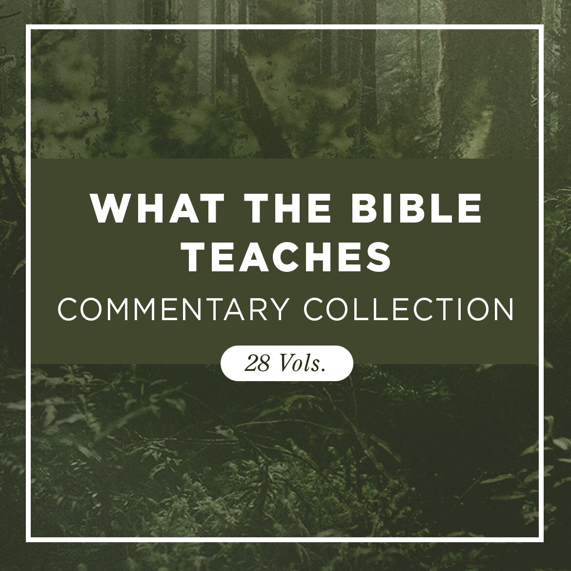 What the Bible Teaches Commentary Collection (28 vols.)