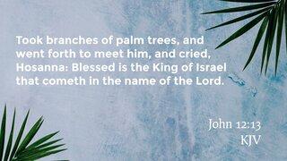 John 12-13