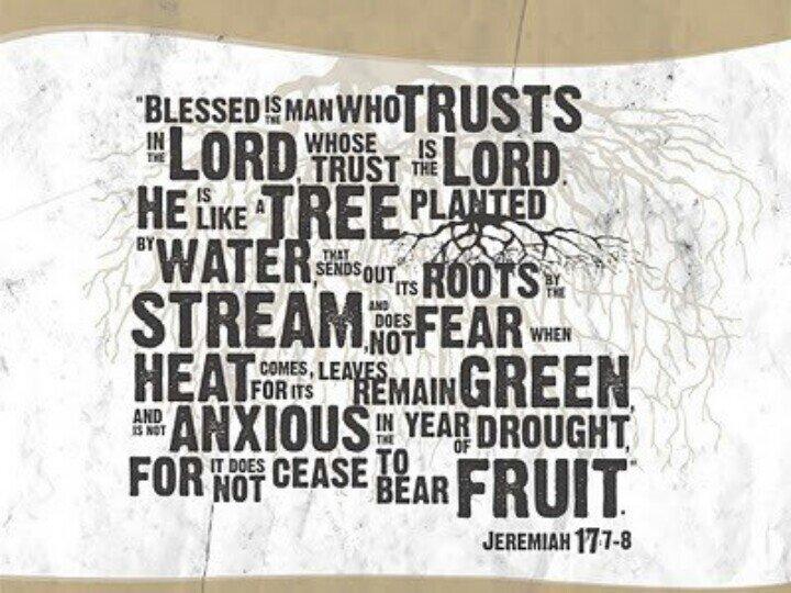 Do We Truly Trust Jesus?