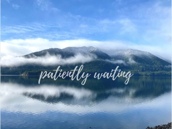 Patiently Waiting - Rebecca Trull