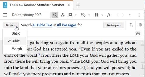 P23-6 Bible Search Types