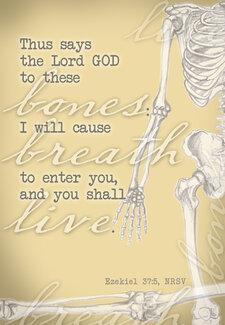 Bones Ezekiel 37 5