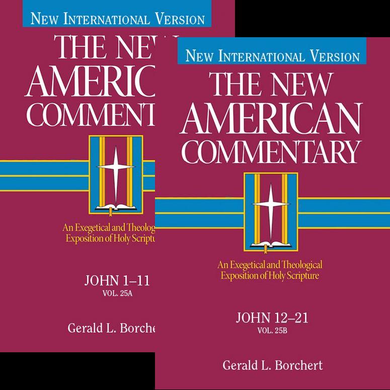 John, 2 vols. (The New American Commentary | NAC)