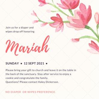 Diaper and Wipes Drop Off Mariah