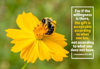 Giving Bee