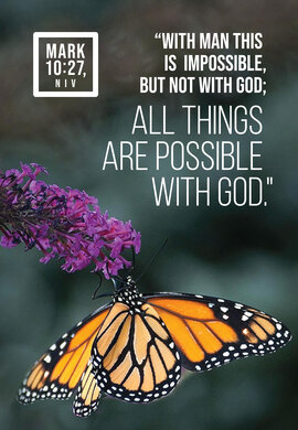 Butterfly All Things Are Possible Mark 10 27