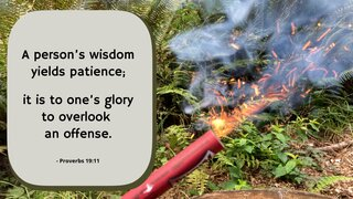 Patience 4 A Person S Wisdom Yields Patience