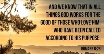 Bible Verses Romans 8 28