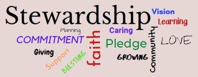 Stewardship-2021-Graphic