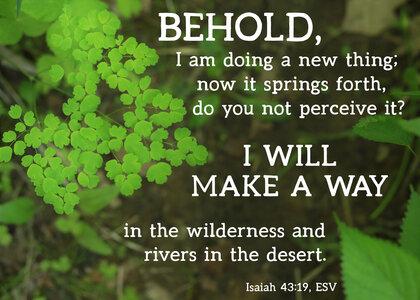 New Thing Isaiah 43 19