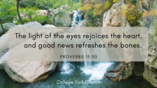 The light of the eyes rejoices the heart, and good news refreshes[c] the bones.