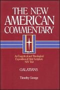 The New American Commentary: Galatians (NAC)