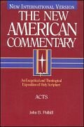 The New American Commentary: Acts (NAC)