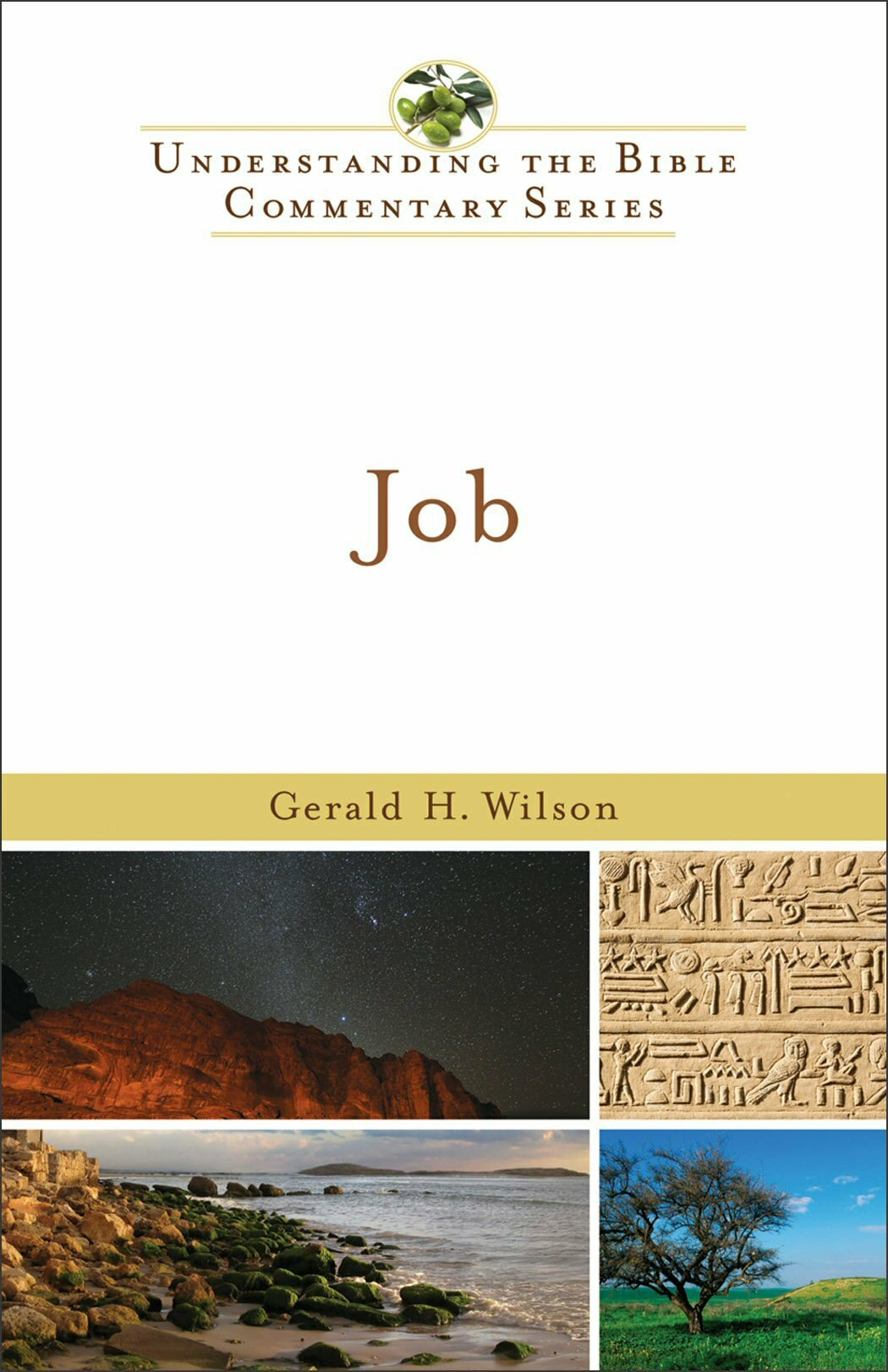 Job (Understanding the Bible Commentary | UBC)