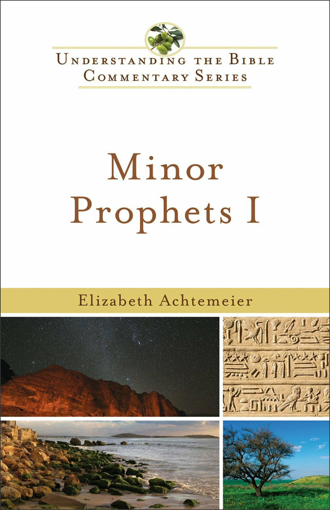 Minor Prophets, vol. 1 (Understanding the Bible Commentary | UBC)