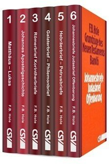 Grundzüge des Neuen Testaments (6 Bde.)