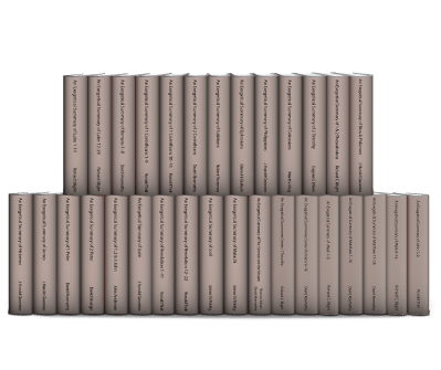 Exegetical Summaries Series (31 vols.)
