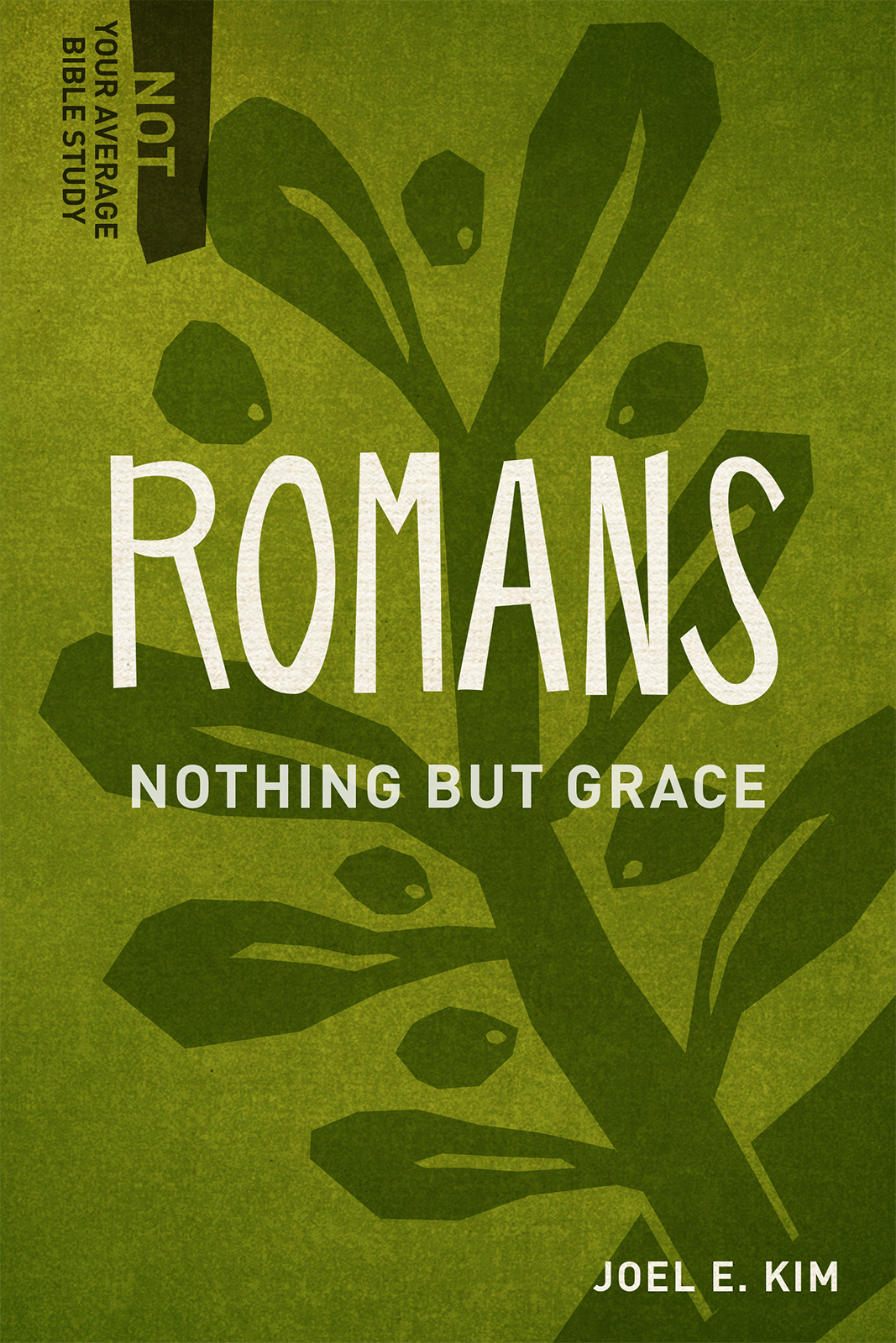 Romans: Nothing but Grace (Not Your Average Bible Study)