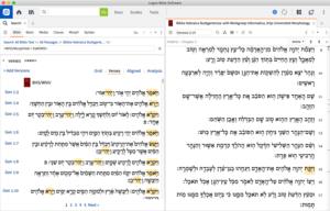 Hebrew Grammatical Constructions