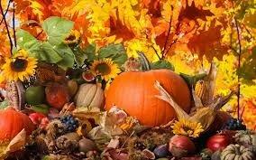Pumpkinssunflowers