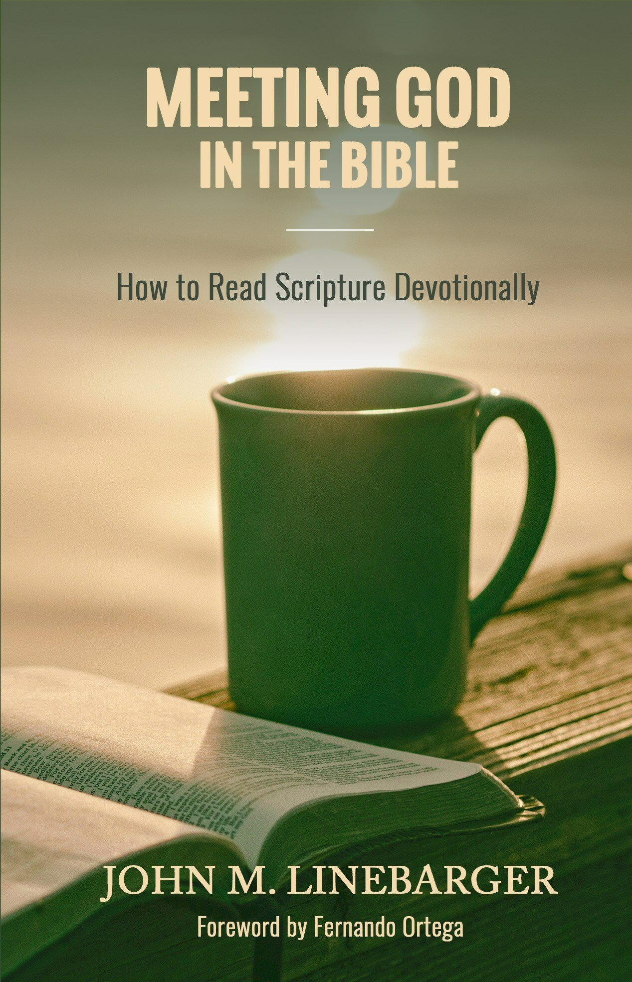 Meeting God in the Bible: How to Read Scripture Devotionally