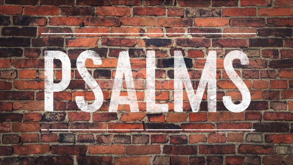 Psalms - Brick Wall large preview