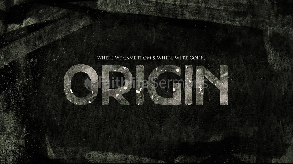 Dark Forest origin preview