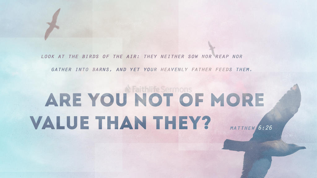Matthew 6:26 large preview