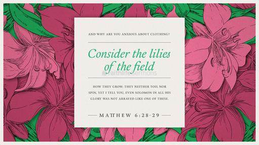 Matthew 6:28–29