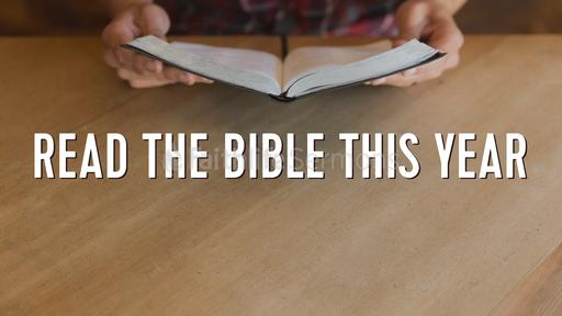 Read the Bible This Year