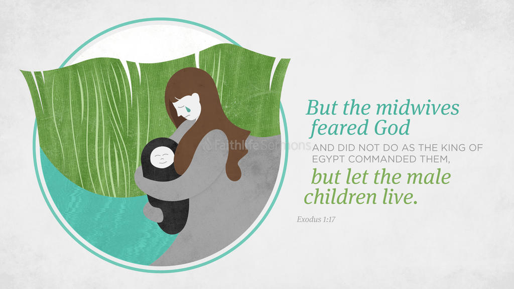 Exodus 1:17 large preview