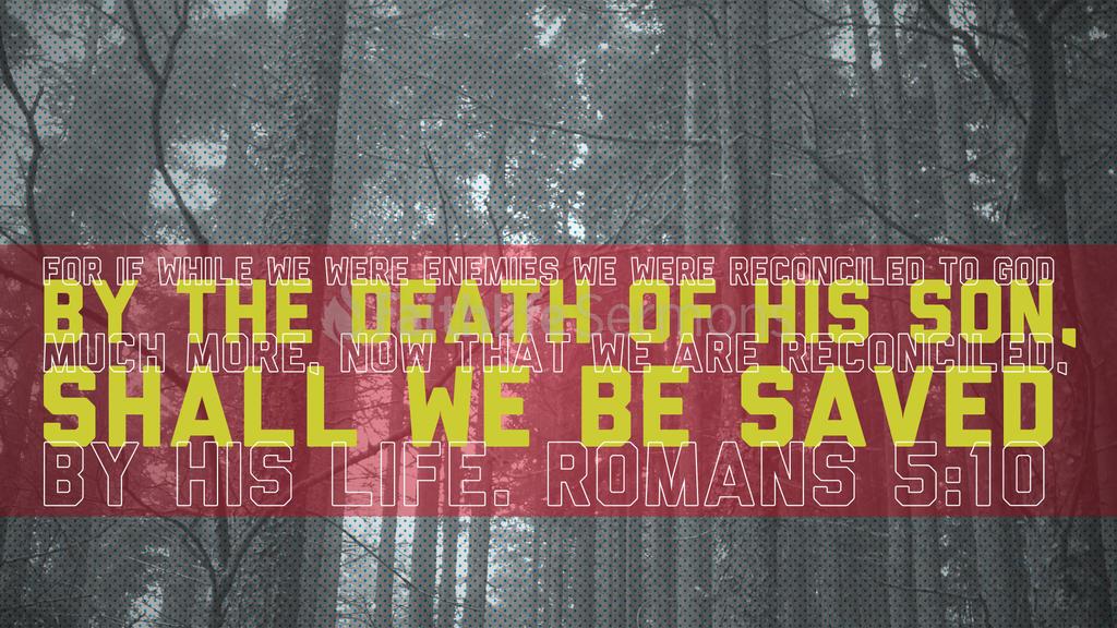 Romans 5:10 large preview