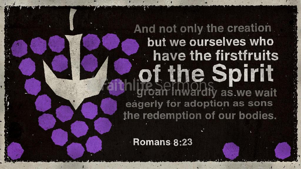 Romans 8:23 large preview