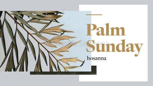 Palm Sunday: Hosanna