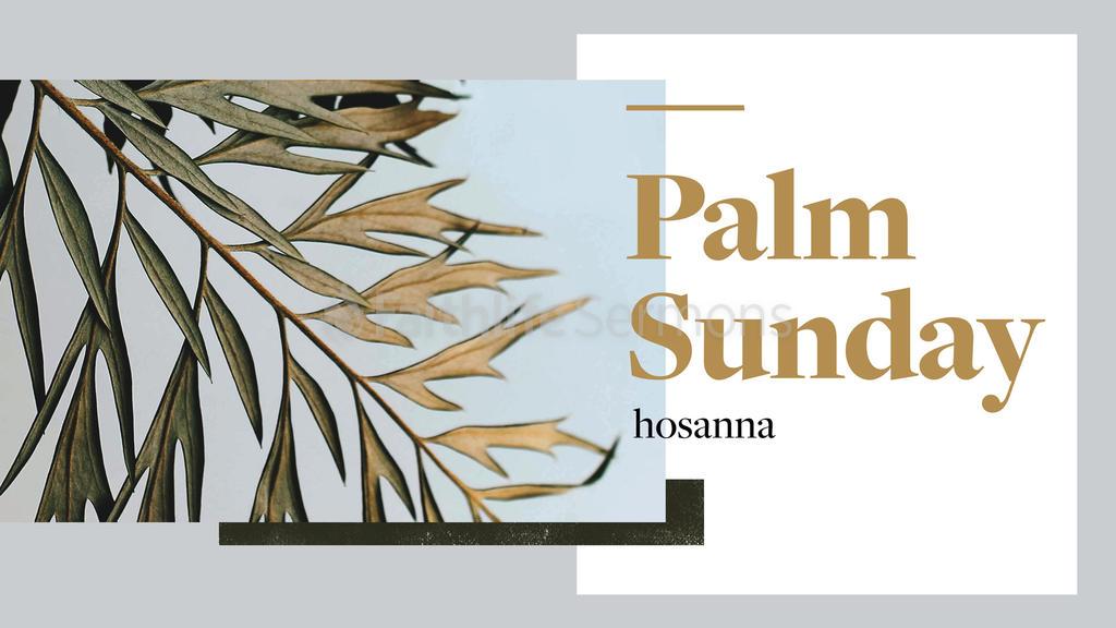 Palm Sunday: Hosanna large preview