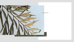 Palm Sunday Hosanna welcome 16x9 PowerPoint Photoshop image