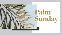 Palm Sunday Hosanna subheader 16x9 PowerPoint Photoshop image